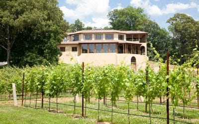"Dahlonega Receives The ""American Viticultural Area"" (AVA) Designation"