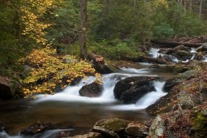 A photograph of water running over rocks in Smith Creek with beautiful trees with fall leaves in the background